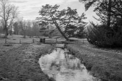 The River Stiffkey