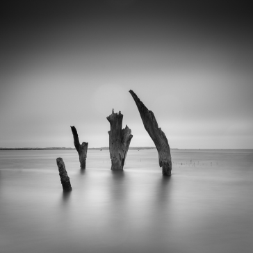 Thornham stumps